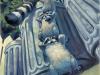 raccoon-1r