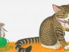 catmouseeeny24-25webr