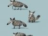 Kawamura wolf spots