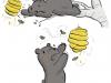 weinberg_bear-samples_small
